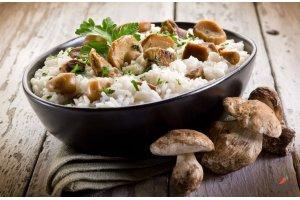 Белые грибы (боровики) — праздник вкуса в любом виде