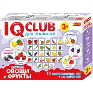 Изучение предметов Изучаем овощи и фрукты IQ-club для детей (288707)