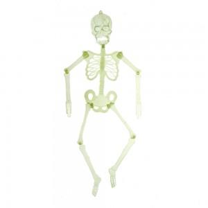 Скелет светящийся в темноте Веселый Роджер (svetrodger)