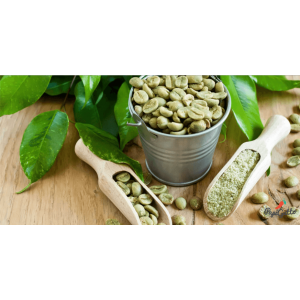 Зеленый кофе — только факты