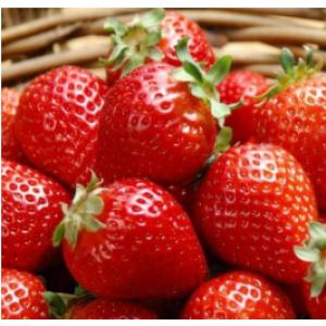 7 непередбачуваних фактів про полуницю