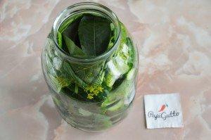 Малосольні огірки 8