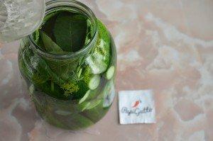 Малосольні огірки 9