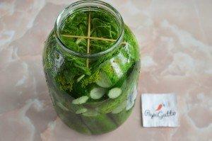 Малосольні огірки 11