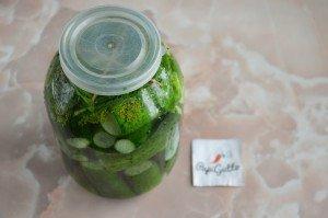 Малосольні огірки 12